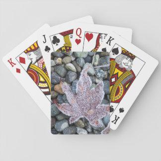 Us, Wa, Bainbridge Island. Early Morning Frost 2 Poker Deck