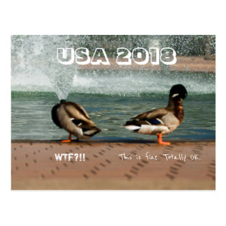 USA 2018 WTF This is Not Normal Anti-Trump Duck Postcard