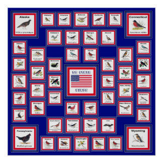 USA 50 STATE BIRDS BLUE/552 POSTER