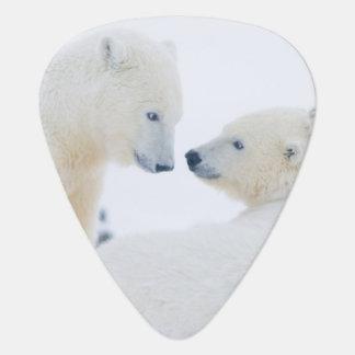 USA Alaska 1002 Coastal Plain of the Arctic Guitar Pick
