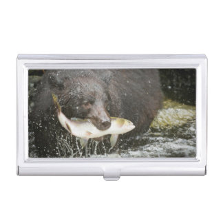 USA, Alaska, Anan Creek. Close-Up Of Black Bear Case For Business Cards