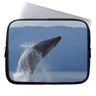 USA, Alaska, Angoon, Humpback Whale (Megaptera Laptop Sleeves