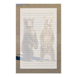 USA. Alaska. Coastal Brown Bear cubs watch their Personalised Stationery