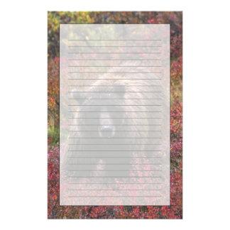 USA, Alaska, Denali National Park. Grizzly bear Customised Stationery