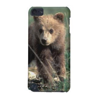 USA, Alaska, Denali National Park, Grizzly iPod Touch 5G Case