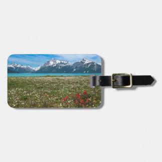 USA, Alaska, Glacier Bay National Park 2 Luggage Tag