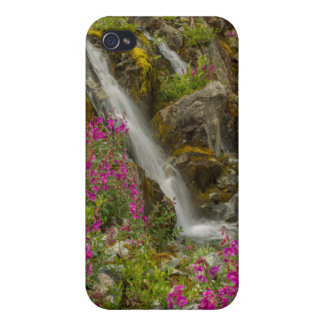 USA, Alaska, Glacier Bay National Park. Fireweed iPhone 4 Cover