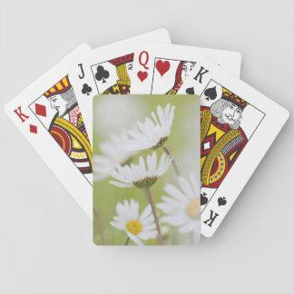 USA, Alaska, Glacier Bay National Park Playing Cards
