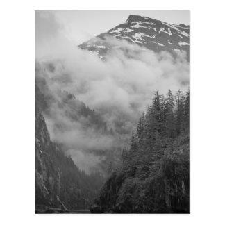 USA, Alaska, Juneau, Rainforest covers fjords in Postcard