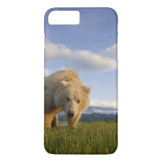 USA, Alaska, Katmai National Park, Brown Bear 3 iPhone 7 Plus Case