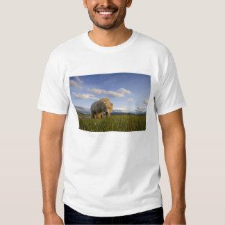 USA, Alaska, Katmai National Park, Brown Bear 3 T Shirt