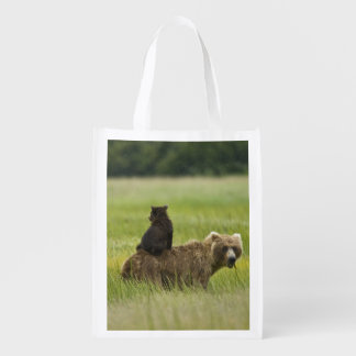 USA, Alaska, Lake Clark National Park. A Grocery Bags