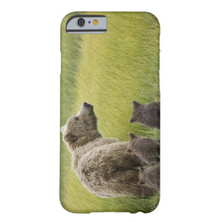 USA, Alaska, Lake Clark National Park. Grizzly Barely There iPhone 6 Case