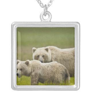 USA, Alaska, Lake Clark National Park. Mom and Square Pendant Necklace