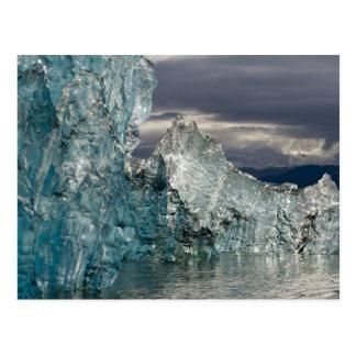 USA, Alaska, Tongass National Forest, Tracy 3 Postcard