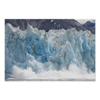 USA, Alaska, Tongass National Forest, Tracy Photo Print
