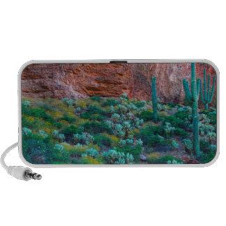 USA, Arizona. Desert Flora iPhone Speakers