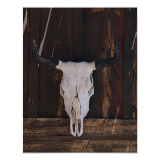 USA, Arizona. Skull On A Shop Wall Print
