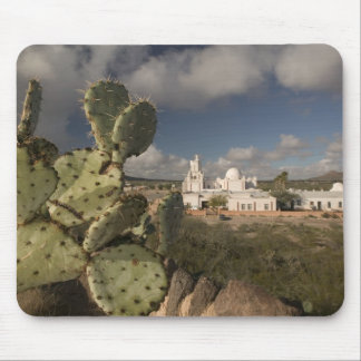 USA, Arizona, Tucson: Mission San Xavier del Bac 2 Mouse Pads