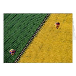USA, Arizona, Val Vista. Hot-air balloons soar Card