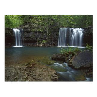 USA, Arkansas, Ozark- St Francis National Postcard