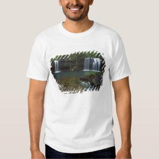 USA, Arkansas, Ozark- St Francis National T Shirt