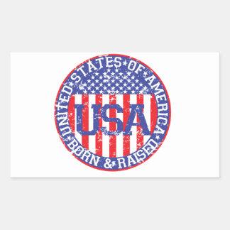 USA Born and Raised Rectangular Stickers