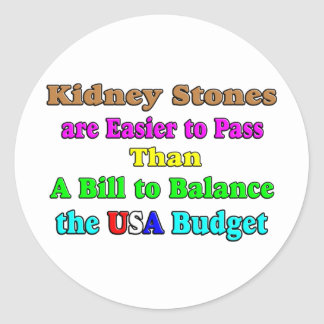USA Budget 2011 Round Sticker