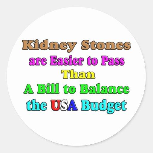 USA Budget 2011 Stickers