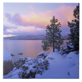USA, California. A winter day at Lake Tahoe. Large Square Tile
