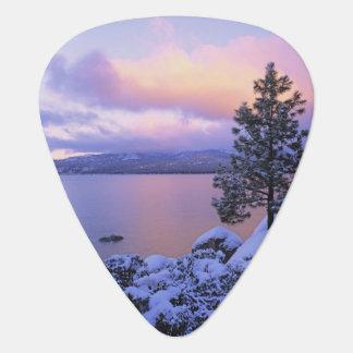 USA, California. A winter day at Lake Tahoe. Plectrum