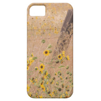 USA, California, Adin. Barbed-Wire Fence Barely There iPhone 5 Case