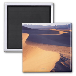 USA, California, Death Valley, sand dunes, dawn Square Magnet