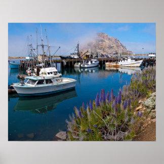 USA, California. Docked Boats At Morro Bay Posters