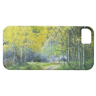 USA, California, Eastern Sierra Mountains. iPhone 5 Cover