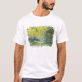 USA, California, Eastern Sierra Mountains. T-Shirt