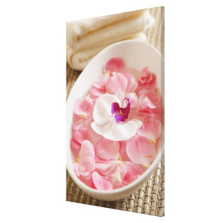 USA, California, Fairfax, Bowl of petals by Stretched Canvas Prints
