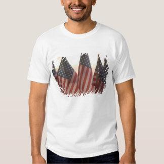 USA, California, Gold Country, Amador City: Tees