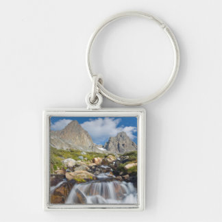 USA, California, Inyo National Forest 14 Silver-Colored Square Key Ring