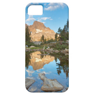 USA, California, Inyo National Forest. 2 iPhone 5 Cases