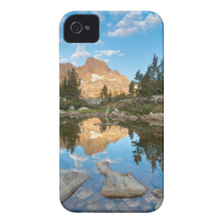 USA, California, Inyo National Forest. 2 iPhone 4 Cases