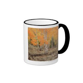 USA, California, Inyo National Park , Red aspens Coffee Mugs