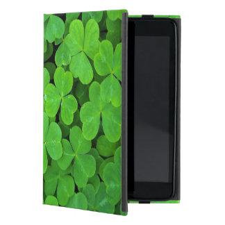 USA, California, Jedediah Smith Rewood SP. Cases For iPad Mini