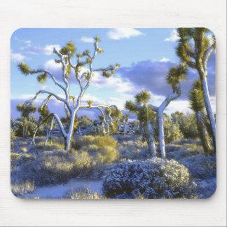 USA, California, Joshua Tree National Park. 2 Mousepad