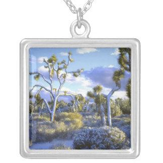 USA, California, Joshua Tree National Park. 2 Personalized Necklace