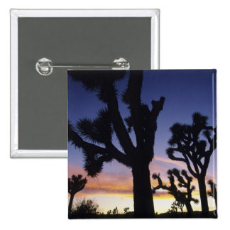 USA California Joshua Tree National Park Buttons