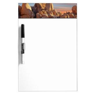 USA, California, Joshua Tree National Park Dry Erase Whiteboards
