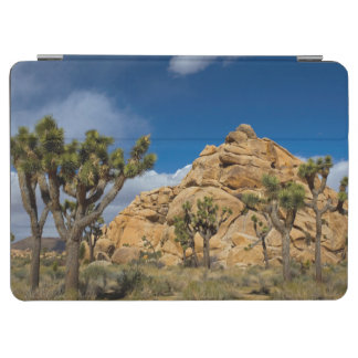 USA, California, Joshua Tree National Park iPad Air Cover