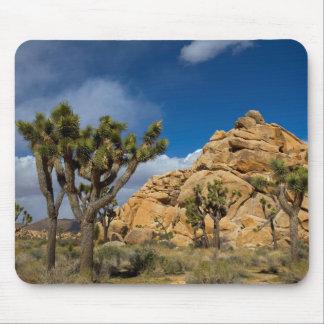 USA, California, Joshua Tree National Park Mouse Pad
