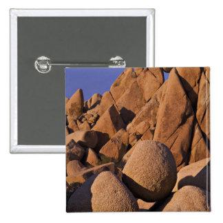 USA California Joshua Tree National Park Pin